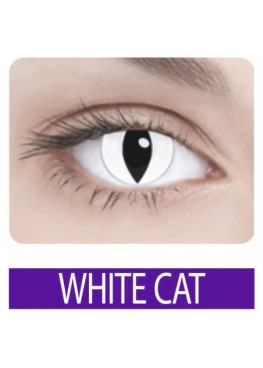 ADRIA Crazy WHITE CAT (1 шт)
