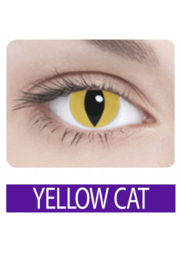 ADRIA Crazy YELLOW CAT (1 шт)